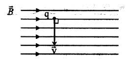 ph11 s3 force magnetic 09 نیروی مغناطیسی وارد بر ذره باردار متحرک در میدان مغناطیسی