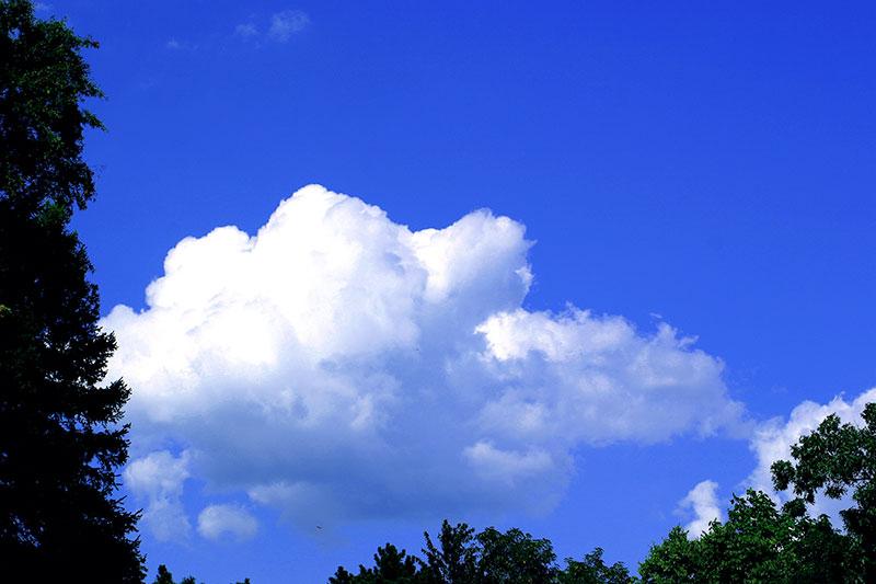 bluesky01 چرا آسمان آبی است؟