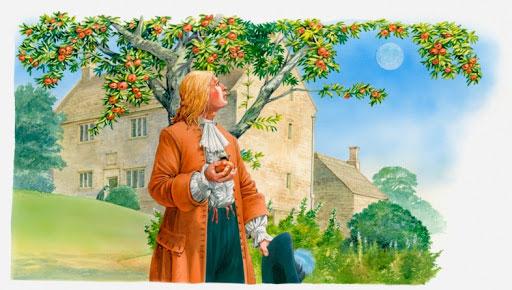 نیروی گرانشی نیوتون و افتادن سیب از درخت